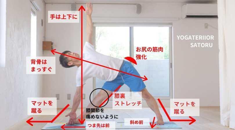 トリコナーサナ三角のポーズ解説